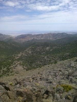 Survey, Piper Peak