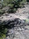 Survey, rock ring feature