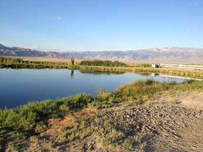 Fish Lake Valley has some nice hot springs.