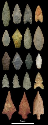 Archaic Period projectile points discovered during survey.