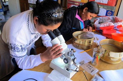 Karen and Virginia examining ancient plant remains in the Collasuyo Archaeological Research Institute lab in Puno.